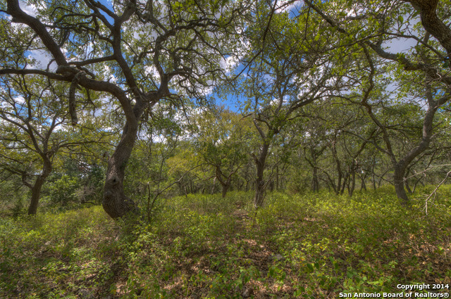 0-lot18-natures-way-new-braunfels-tx-78132