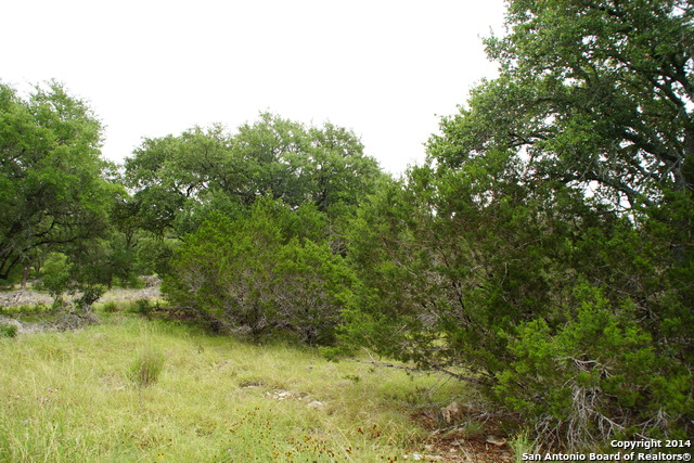 119-restless-wind-spring-branch-tx-78070